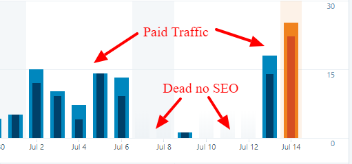 Paid Traffic vs No SEO WordPress com