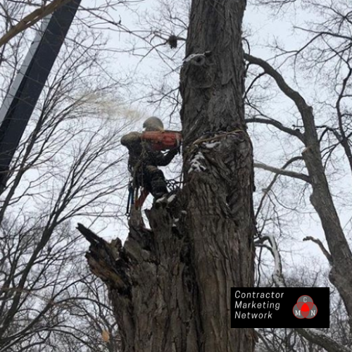 Marketing Agency for Tree Services